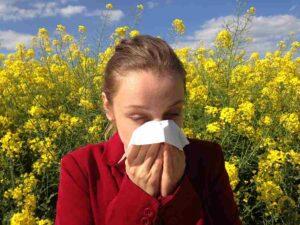 Hay Fever or Seasonal Allergies caused by pollen